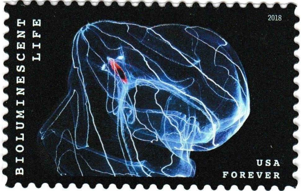 US postage stamp of a bio-luminescent jellyfish.